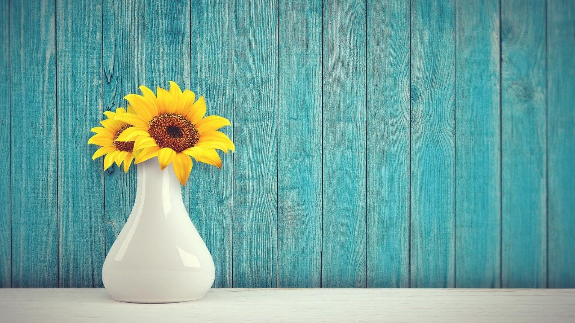 Pourquoi suivre des blogs sur l'aménagement de maison ?
